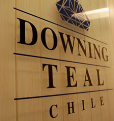 Downing Teal Chile SpA