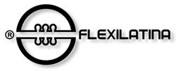 Flexilatina de Chile S.A.