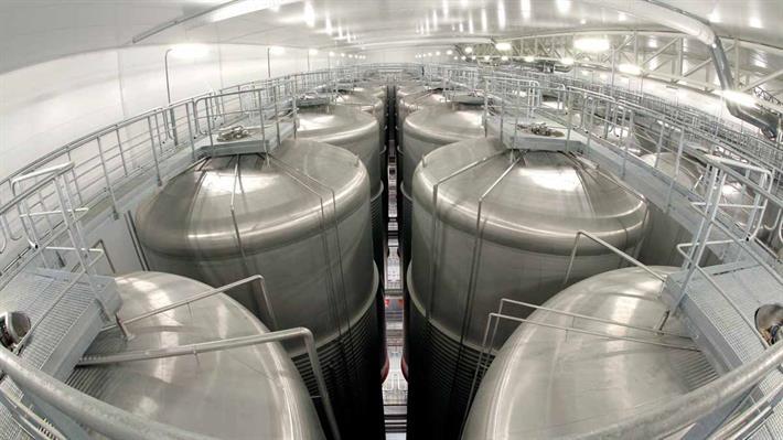 Brewing Fermentation