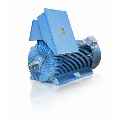 Dust Ignition Protection Motors