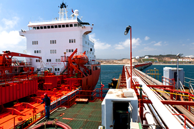 Maritime Terminals And Logistic Services