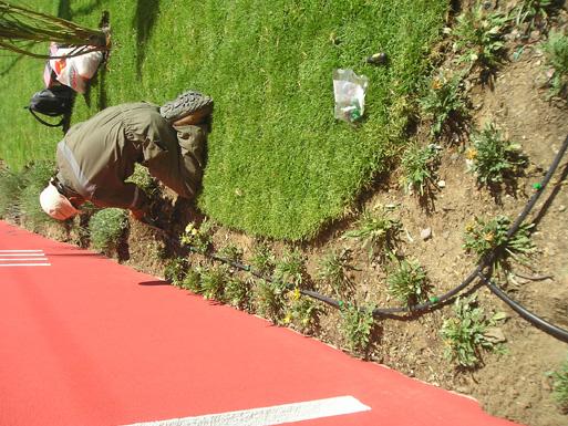 168_agroamancay-construccion-y-mantencion-de-areas-verdes