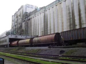 Grain-terminal