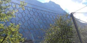 RXE-Barriere: Höchste Energieaufnahme Bei Geringster Auslenkung