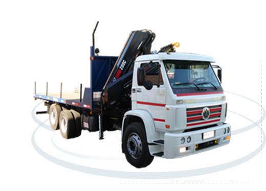 Camión Pluma Volkwagen 24220