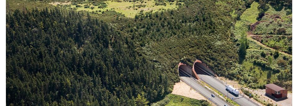 Falso Túnel Caviedes