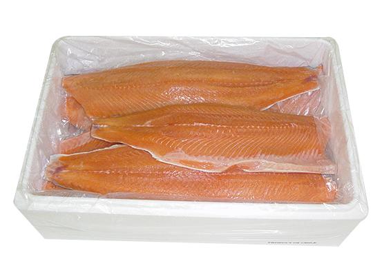 3844_acuicultura-caja-termica1