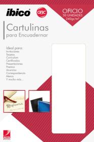 3880_CARTULINA_OFICIO_30-UND3