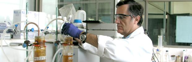 Biomass Production And Inoculation